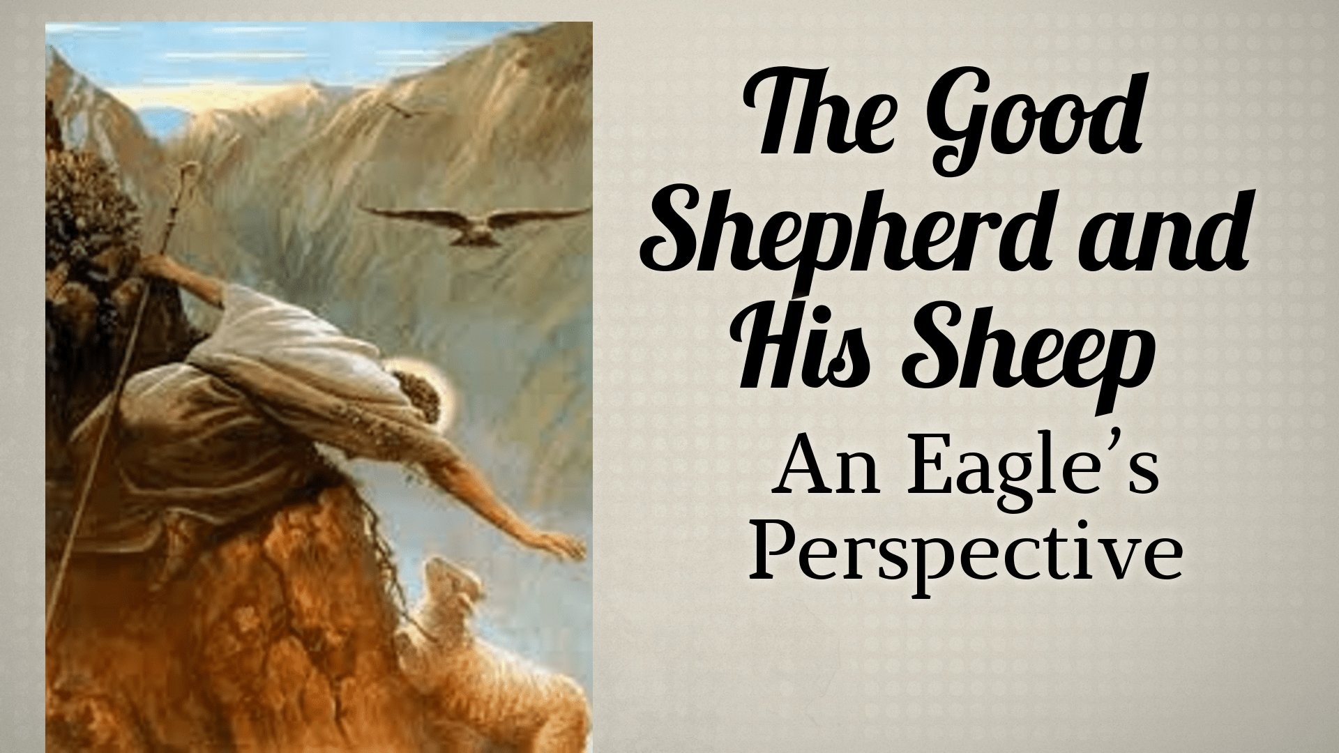 The Good Shepherd - An Eagle's Perspective