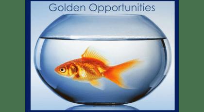 Golden Opportunities – Greg Stephens