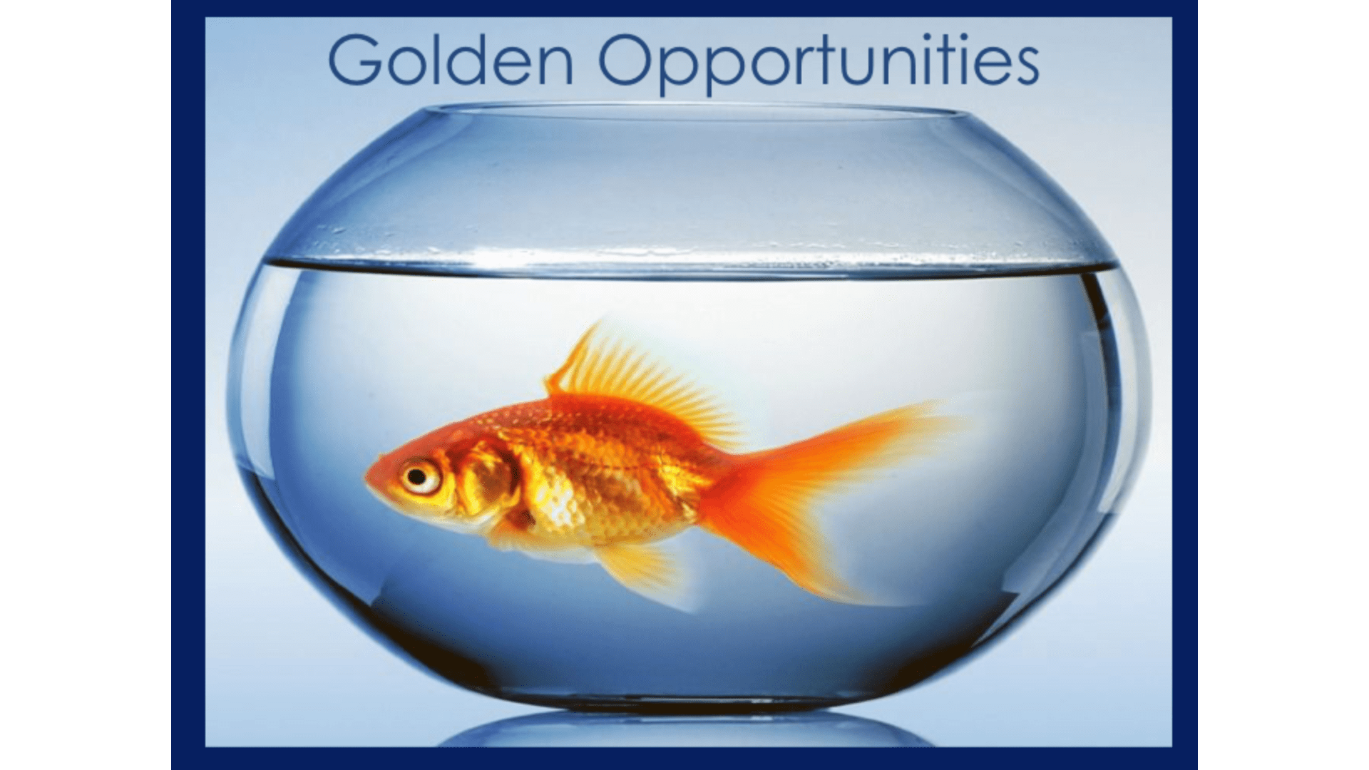 Golden Opportunities - Greg Stephens
