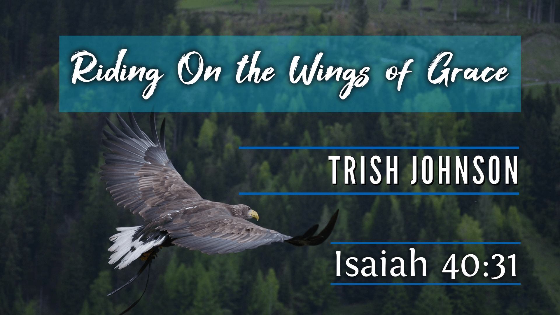 Riding on the Wings of Grace - Trish Johnson
